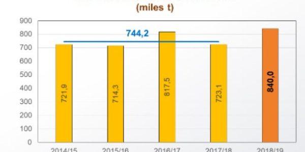 El aceite de oliva comercializó un total de 145.400 toneladas en el mes de julio