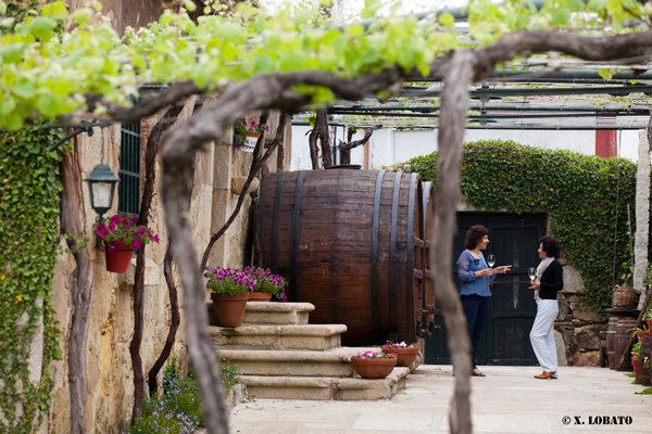 Las Rutas del Vino de España supera los 85 millones de euros en visitas a bodegas y museos