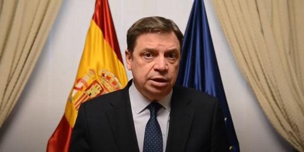España solicita a Europa la prórroga del almacenamiento privado de aceite de oliva