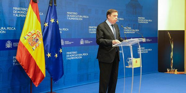 Luis Planas anuncia un paquete de medidas para asegurar la viabilidad y el futuro del sector del aceite de oliva