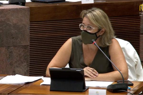 Canarias aborda la situación del sector vitivinícola