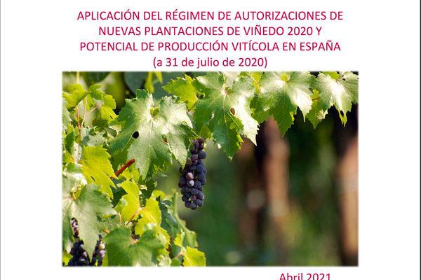 El 96 % de la superficie de viñedo en España está en territorio de alguna denominación de calidad