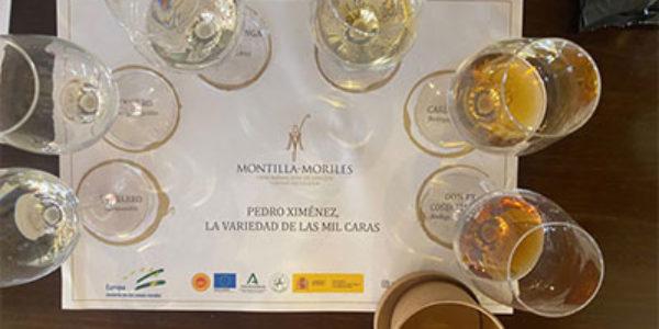 Cata online de vinos de la Denominación de Origen Protegida Montilla-Moriles
