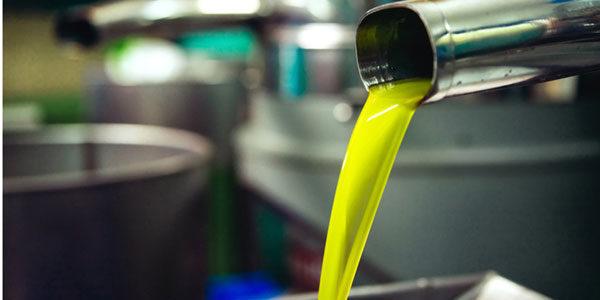 Las exportaciones de aceite de oliva repuntan