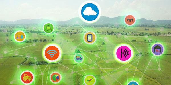 La Xunta convoca por primera vez ayudas para facilitar la actualización informática en el sector agrario